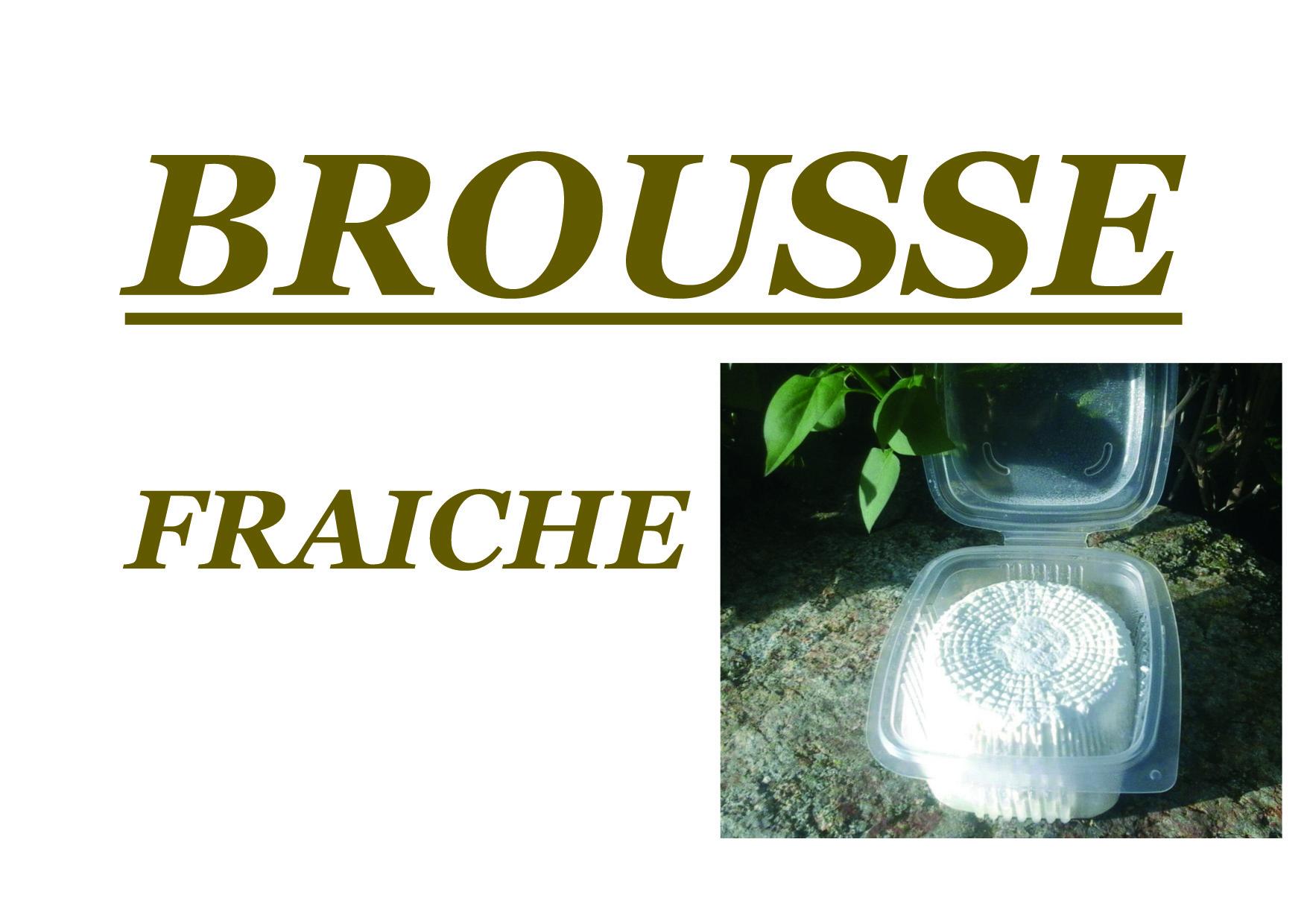 brousse fraîches brebis
