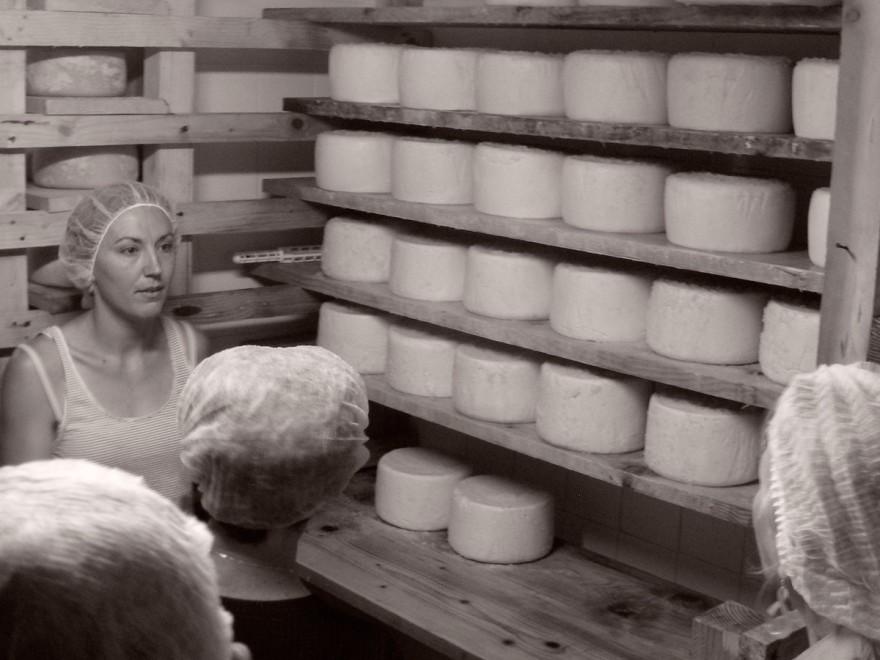 Visite de la fromagerie